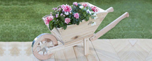 Planters & Baskets Image