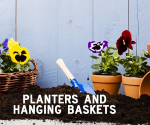 Planters & Hanging Baskets Image