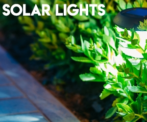 Solar Lights Image