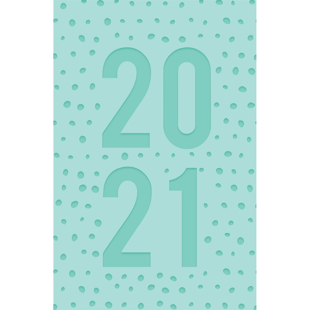 EMBOSSED 2021 POCKET DIARY - MINT