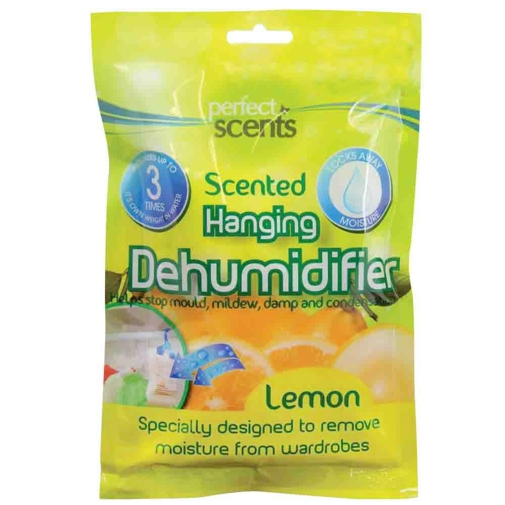 HANGING SCENTED DEHUMIDIFIER