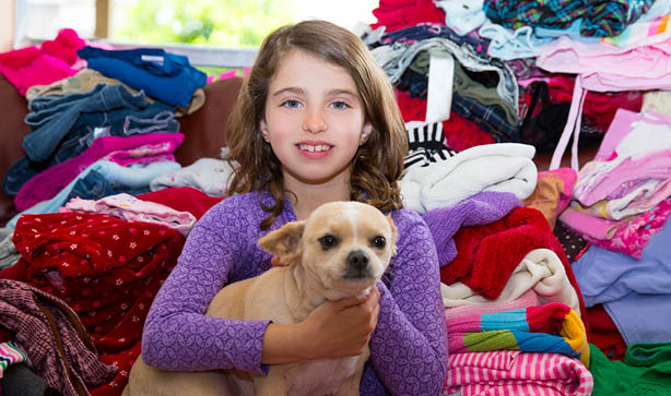 Little girls with her pet chihuahua dog amongst folded clothes