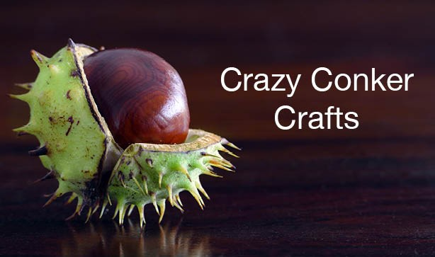 Autumn Half Term: Conker Crazy Crafts & Hacks