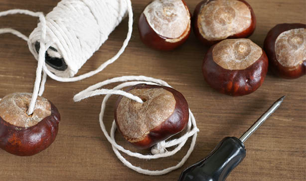 A ball of yarn, a screwdriver, and some conkers