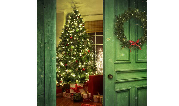 Front door open to a Christmas decorated living room
