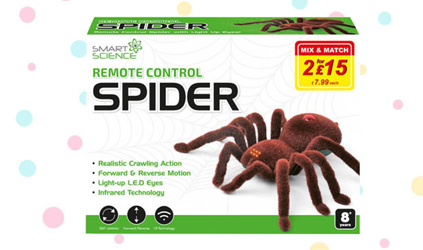 Remote Control Spider Toy