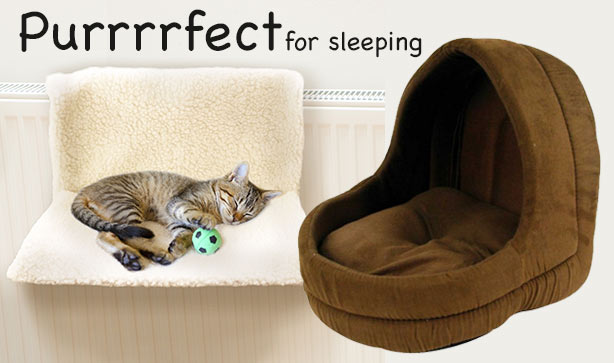 purrrfect-sleep