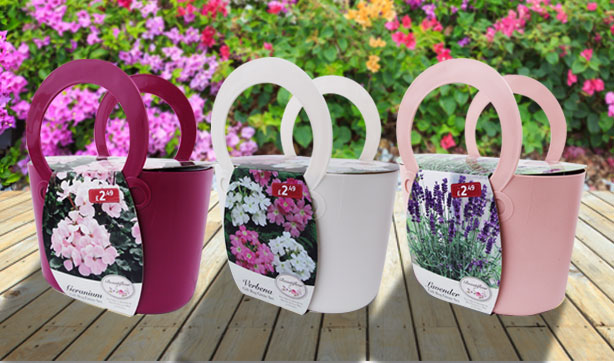 MothersdayBlog2-Bag-Plants
