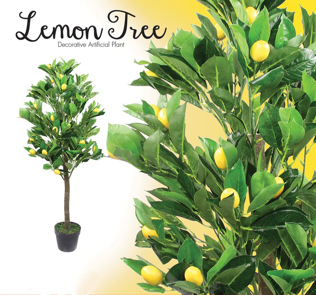 fbook-lemon2 (3)