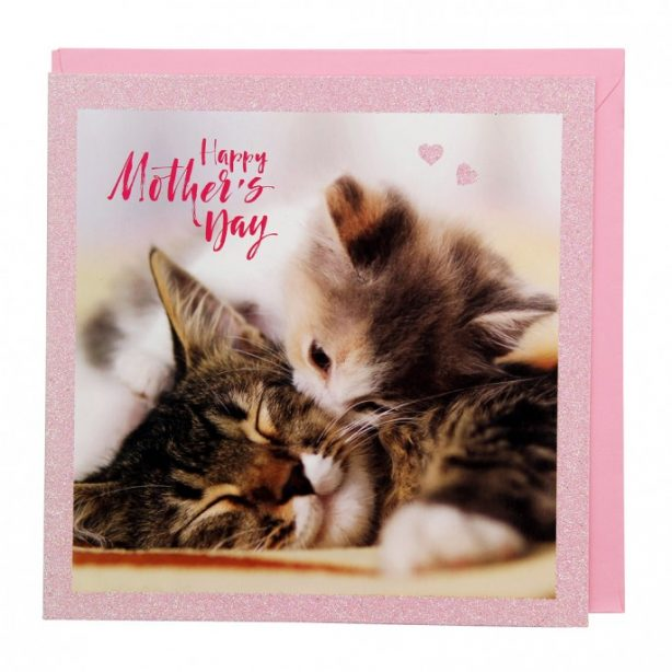 Happy Mother's Day Cute Kitty Cats