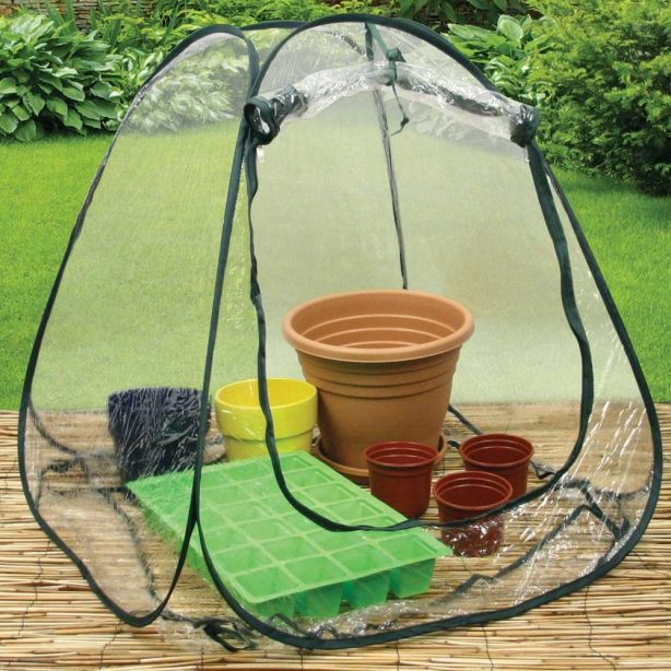 Mini pop-up greenhouse for your garden