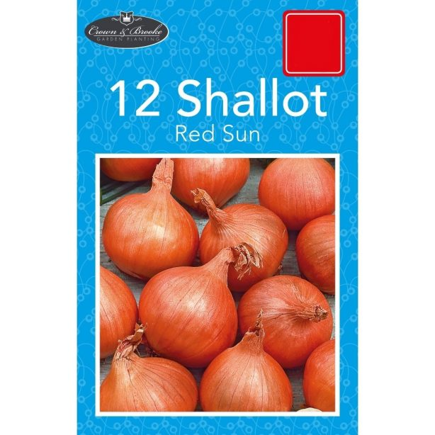 A packet of Shallot seeds from Poundstretcher